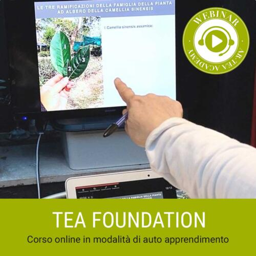 Corsi-Artea-tea-foundation